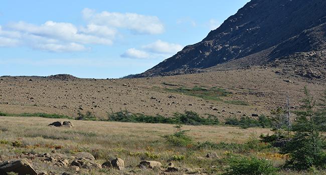 Gros Morne Tablelands nature outdoors Canadian north